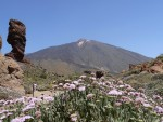Roque Cinchado with view to Teide