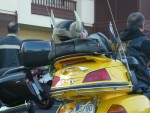you even meet Goldwing-drivers on canarian islands